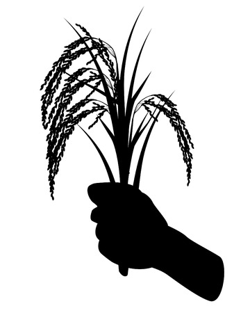silhouette hand with rice vector design