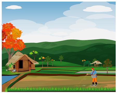 agriculteur sème la conception de vecteur de riz Vecteurs