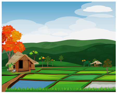 large paddy field vector desing