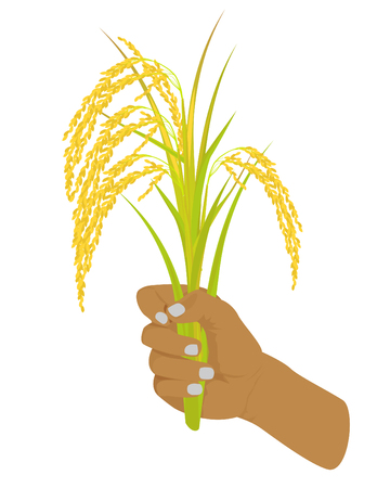hand and rice vector design Illustration