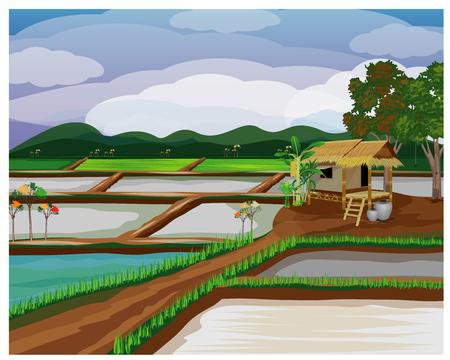 groot rijstveld vector ontwerp