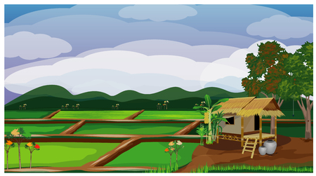 large paddy field vector design