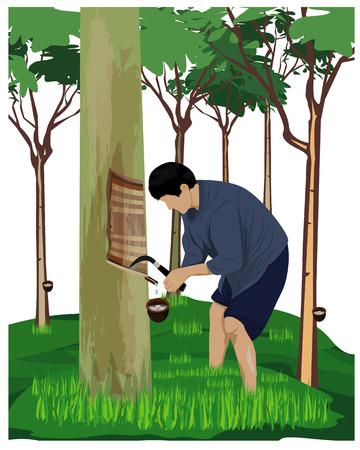 agriculturist scratch rubber tree vector design Illusztráció