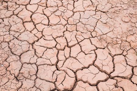 Barren ground background