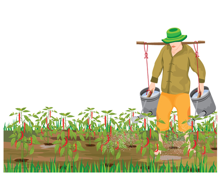 agriculturist watering chili plant vector design