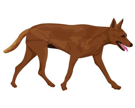 the dog vector design Illustration