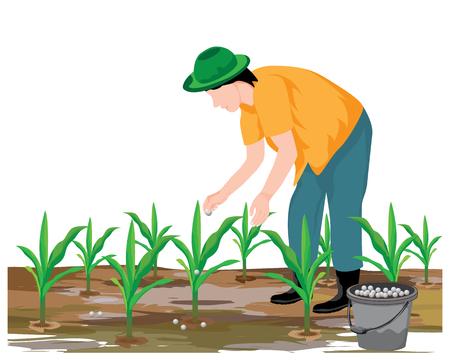 agriculturist manure corn plant vector design