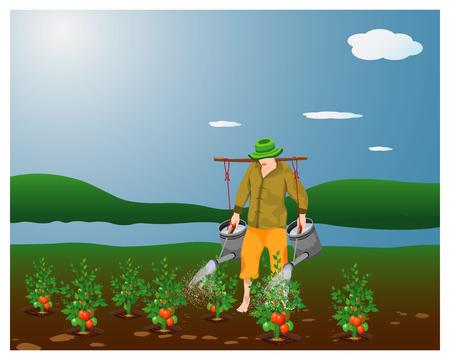 agriculturist water tomato vector design