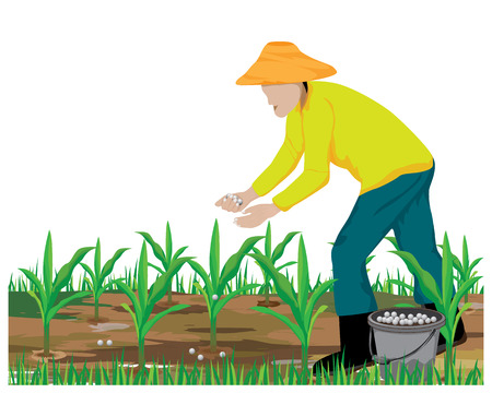 agriculturist manure corn plant vector design Stock Illustratie