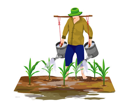 agriculturist water corn plant vector design