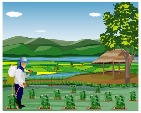 agriculturist spray vegetable plant vector design Иллюстрация