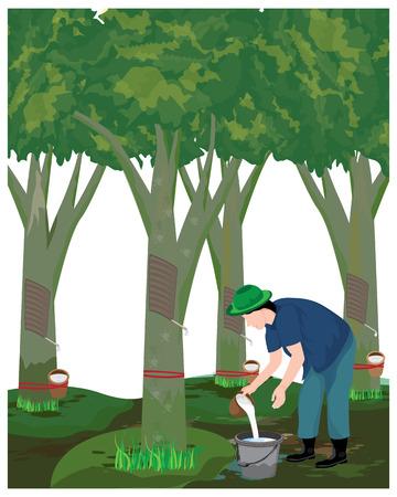 agricoltore raccolta gomma acqua disegno vettoriale Vettoriali
