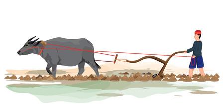 farmer plow in paddy field vector design
