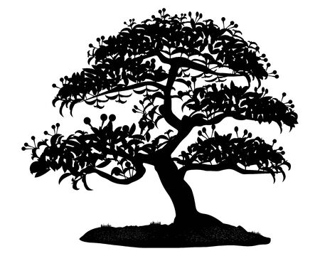 black bonsai tree vector design