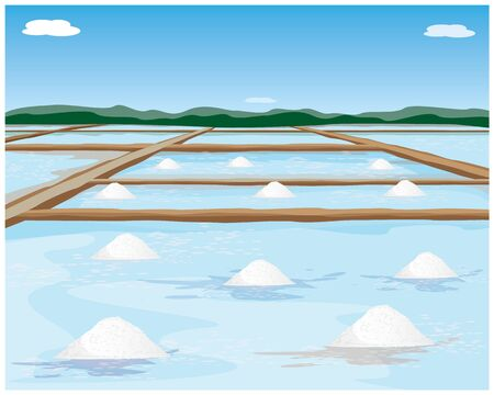 saline field vector design Illustration