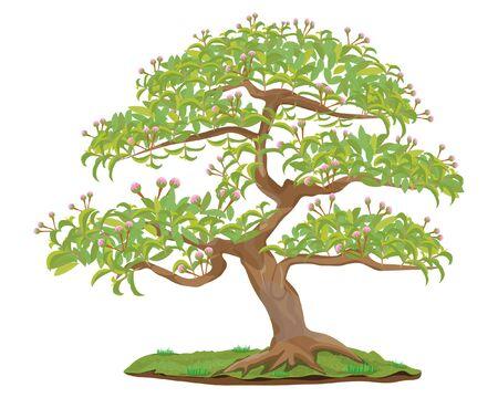 bonsai tree vector design Stockfoto - 132932904