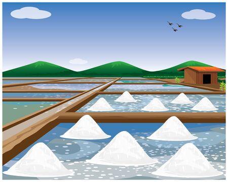 Salzfeldvektordesign