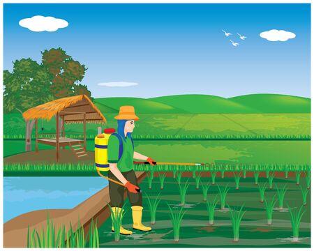 l'agricoltore spruzza il disegno vettoriale della pianta di riso