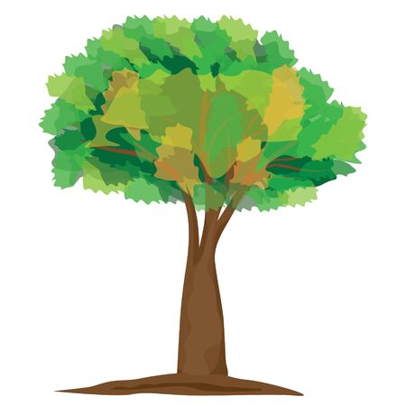isolated green tree vector design