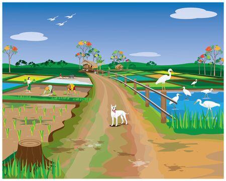 lifestyle of farmer at countryside vector design Illusztráció