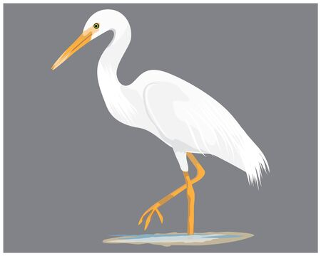 isolated heron vector design