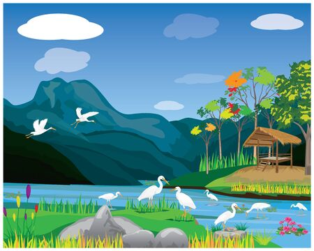 white heron in canal vector design