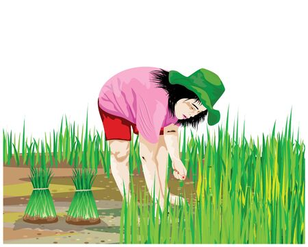 Farmers withdraw seedlings for planting vector design Vector Illustration