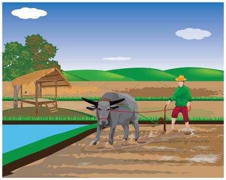 farmer plow in paddy field vector design 矢量图片
