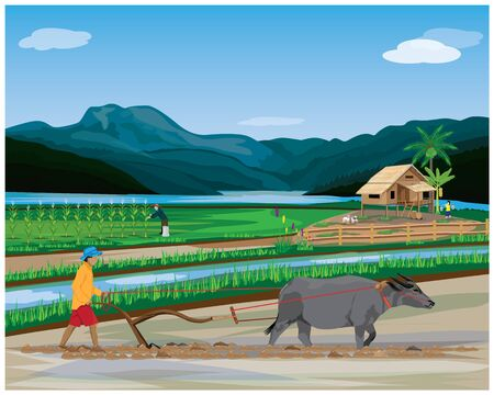 farmer plow in paddy field vector desing
