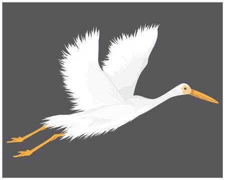 white heron vector design