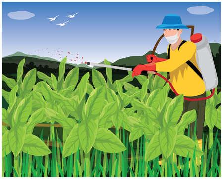 agriculturist spray manure into tobacco plant vector design Иллюстрация