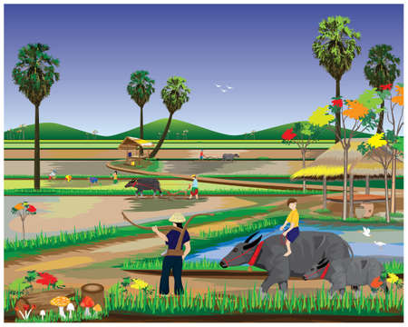 farmer work in paddy field,lifestyle of people at countryside vector design