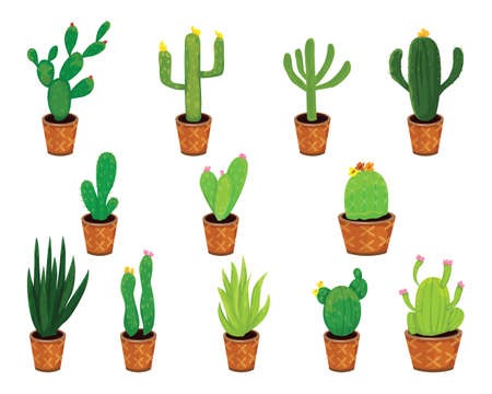 isolated cactus on in pot on white background vector design Stock Illustratie