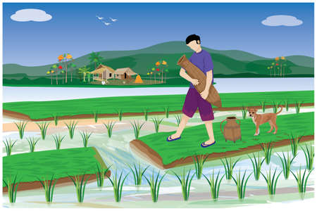 farmer put bamboo fish trap in paddy field vector design