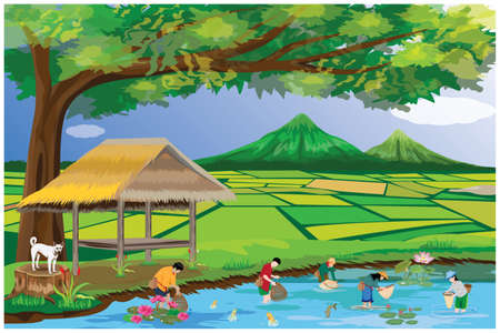 lifestyle of people at countryside vector design,rice field