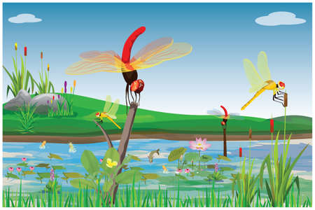 dragonfly with beautiful nature vector design