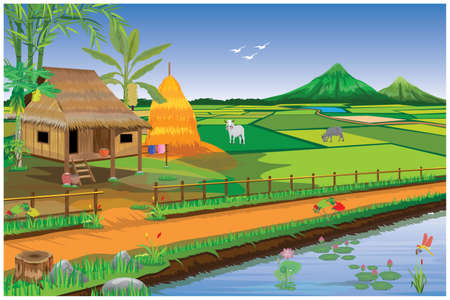 straw hut and paddy field at countryside vector design Ilustracja