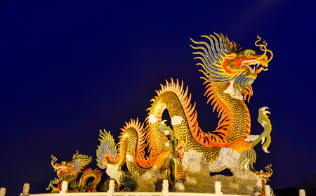 ancient lion: Chinese Dragon at night time