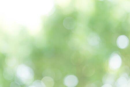 Streszczenie zielone tło światła bokeh