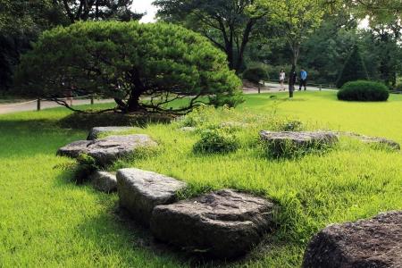 hong reung arboretum, Seoul, Republic of Korea