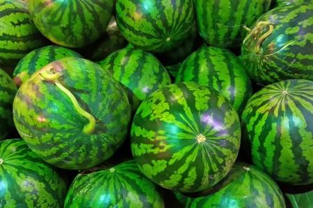 green watermelon for sale, Seoul, Korea Stock Photo