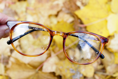 Glasses on the background of autumn yellow leaves. Good for the shop or online market Stock Photo