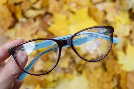 Glasses on the background of autumn yellow leaves. Good photo for the shop or online market Stock Photo