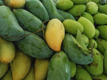 The mango group, named