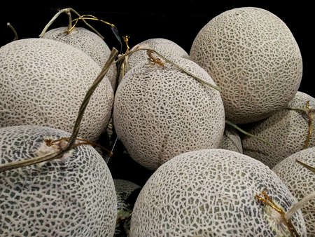 Close up of quality organic Japanese melons or green melons background. 스톡 콘텐츠
