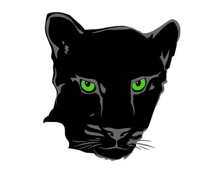 wildcat: vector panther face