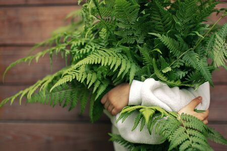 Armful of fern in the hands of a child ecology adventure, nature conservation Stock Photo