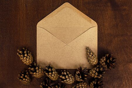 Brown envelop flat lay and pine cones on old wooden background Reklamní fotografie