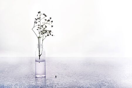 Natural cosmetics in water drops on wooden table and dried flowers