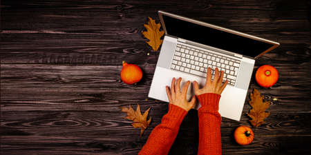 Autumn pumpkins on wooden background with hands using a laptop computer from above